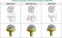 Модификации и внешний вид ЗОМ ППМ